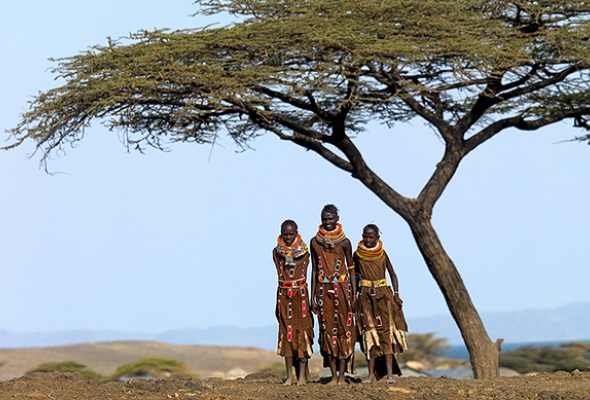 Запах Африки - Фото №2