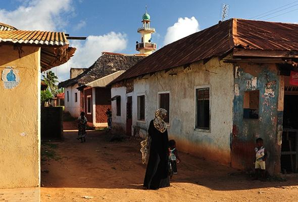 Запах Африки - Фото №3