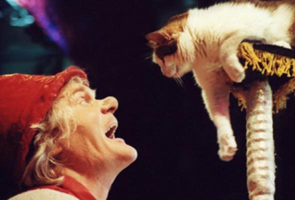 Театр кошек Куклачева - Фото №0