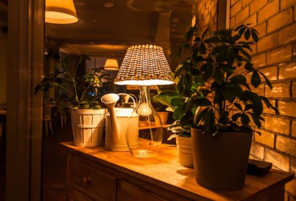 Кафетерий №1 - Фото №8