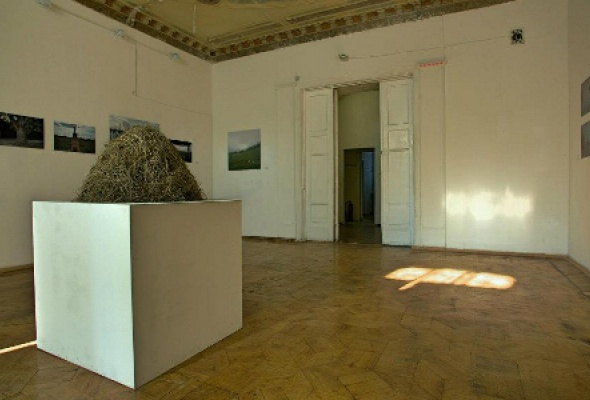 Random Gallery - Фото №2