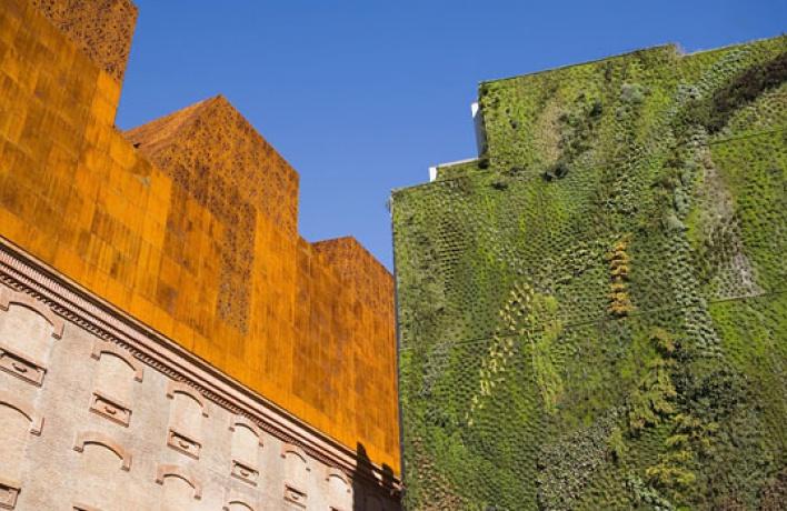 Устен городских многоэтажек появятся висячие сады