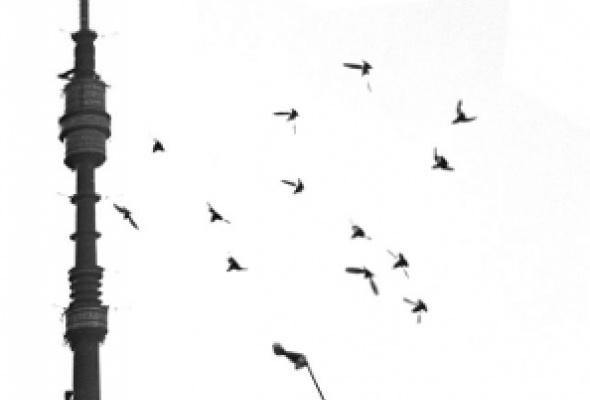 Московские истории. ХХ век. Часть II - Фото №8