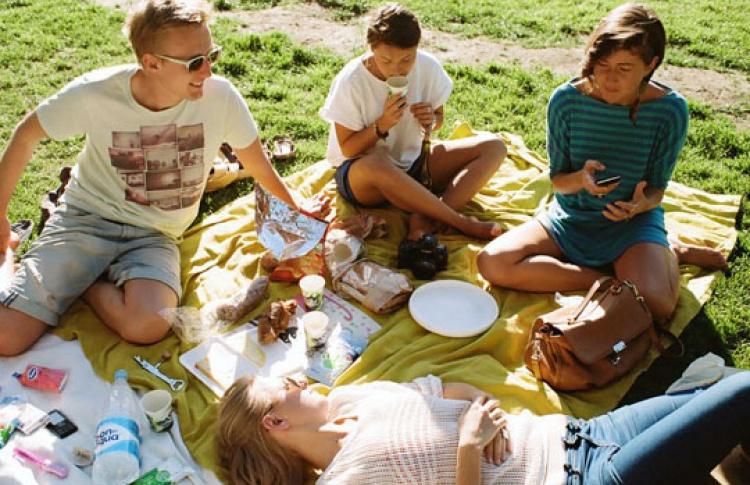 Влесопарках появится более 200 мест для пикников