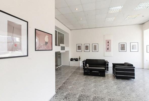 Галерея Коллекционного Искусства DiDi - Фото №3