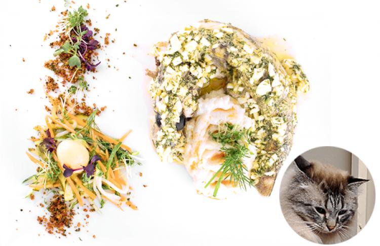 7рыбных блюд сэкспертными оценками котов Фото №386519