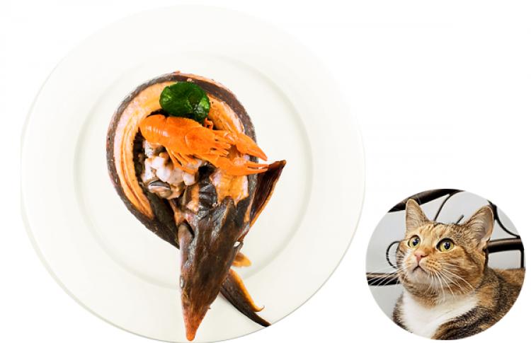 7рыбных блюд сэкспертными оценками котов Фото №386521