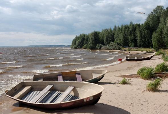Отдых под открытым небом: лучшие места вПодмосковье - Фото №2