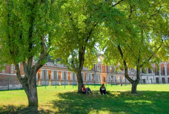 Отдых под открытым небом: 11лучших мест вМоскве - Фото №2