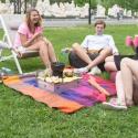 Идеальный пикник