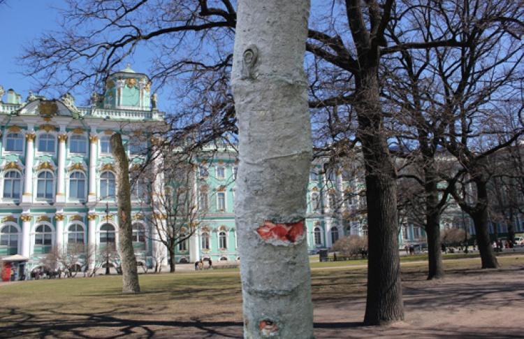 """IV биеннале """"Новые идеи для города"""": """"Город - сад. Зеленый урбанизм"""""""