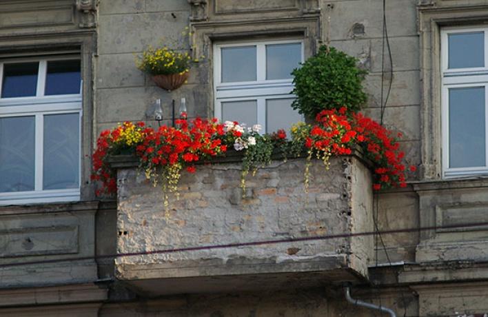 Студия цветов Secret