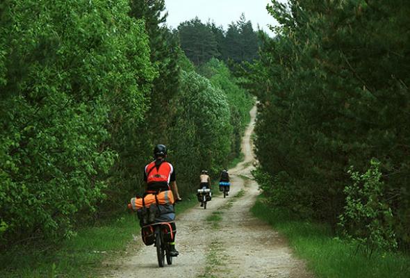 Велосипедизация отпуска - Фото №0