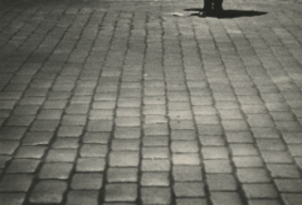 Елеазар Лангман. Концентрация кадра. 1920-е — 1940-е годы - Фото №3