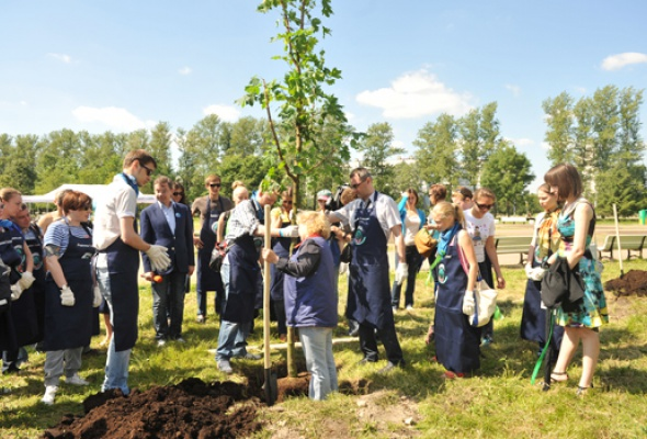 Посади свое дерево - Фото №1