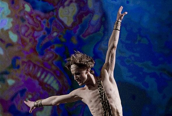 Танцы, опера, нерпа - Фото №0
