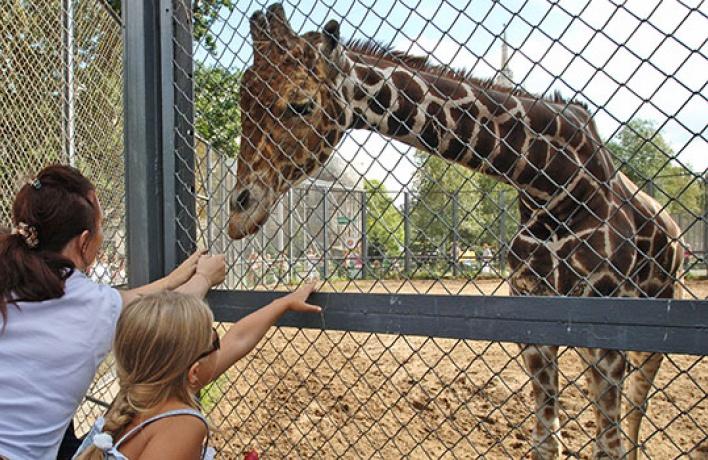 Вмосковском зоопарке стартовал сезон вечерних экскурсий