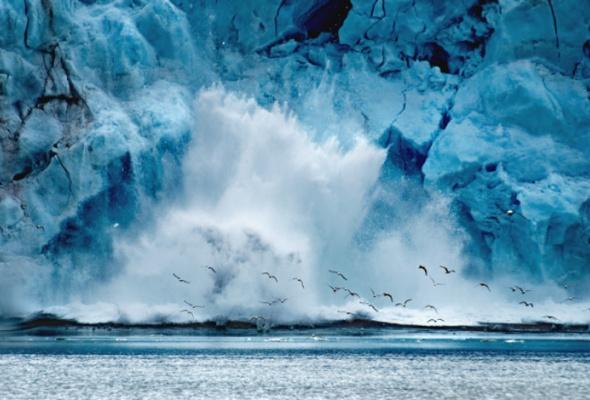 Океан. Экология. Будущее - Фото №0