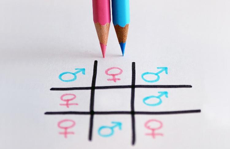 Экспериментальная школа по гендерным исследованиям
