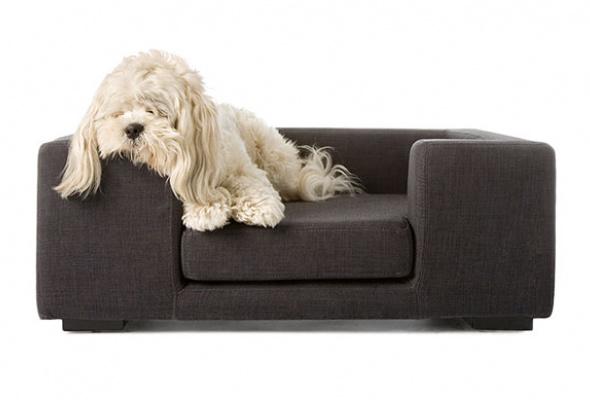 Мебель для животных - Фото №1