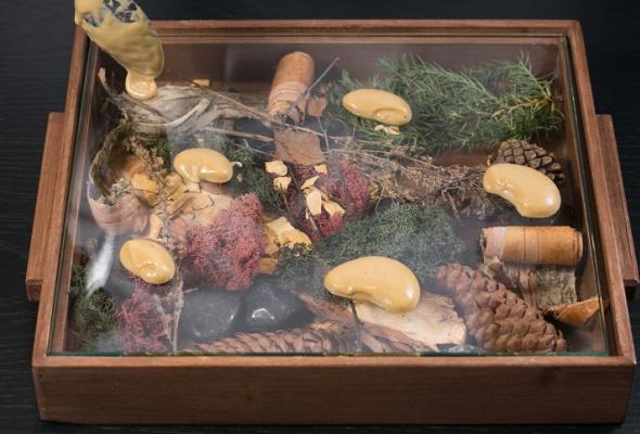 Говяжья вырезка скартофелем, грибами ивареньем изшишек - Фото №16
