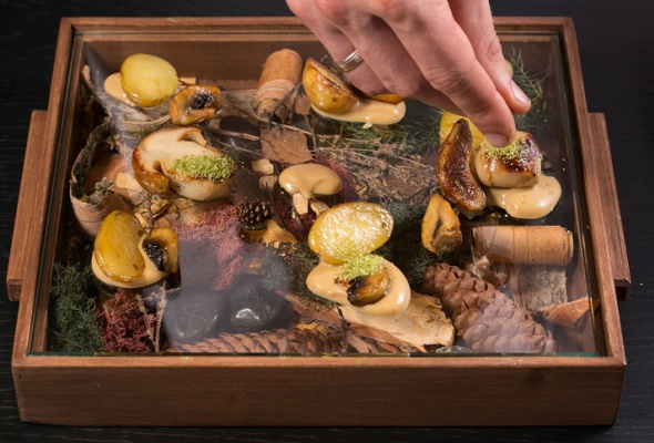 Говяжья вырезка скартофелем, грибами ивареньем изшишек - Фото №20