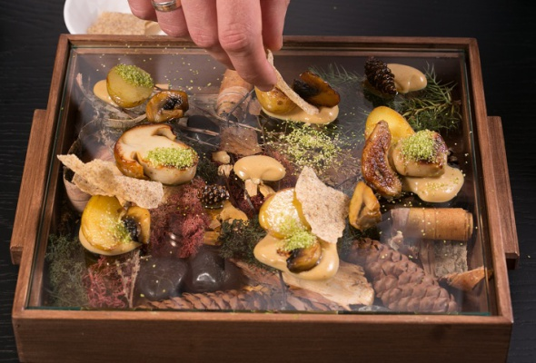 Говяжья вырезка скартофелем, грибами ивареньем изшишек - Фото №22