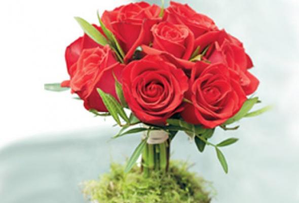 Au Nom de la Rose - Фото №0
