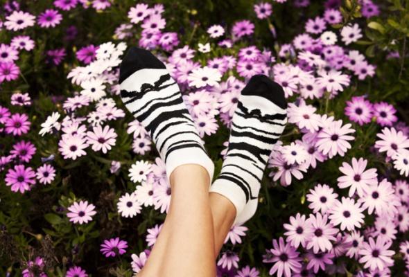 Большой корнер Happy Socks - Фото №0