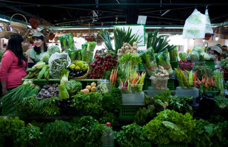 15лучших рынков Москвы Фото №401986