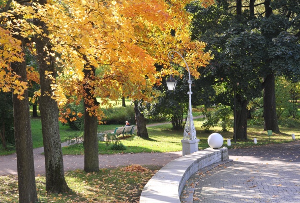 Центральный парк культуры и отдыха (ЦПКиО) - Фото №2