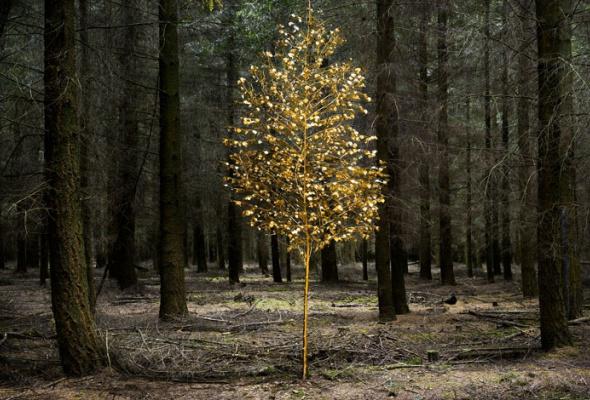 НаПатриарших прудах открылась выставка фотографий «Лесные истории. Осень» - Фото №3