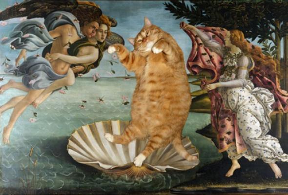Метакино, или Сферический кот в вакууме - Фото №0