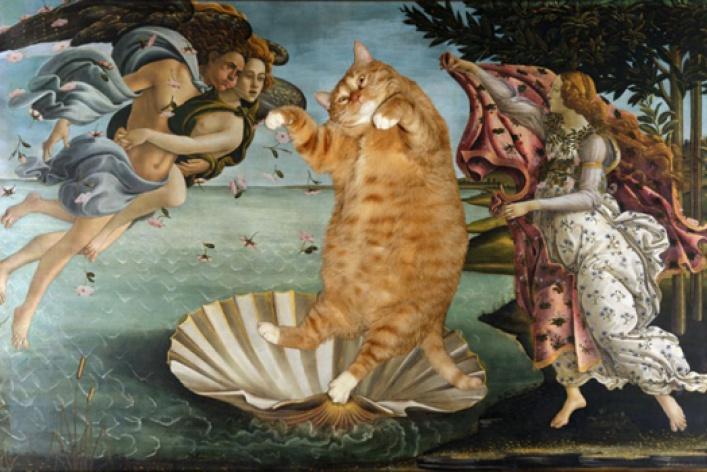 Метакино, или Сферический кот в вакууме