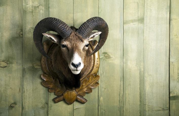 Открытие: магазин этнических подарков «Волшебная лавка»