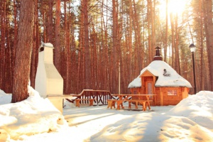 Новый год недалеко отМосквы: 10мест