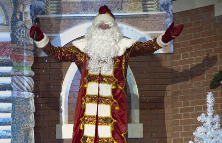 Новогодняя программа «Двенадцать месяцев» в Царицыно