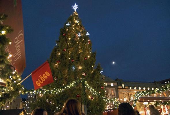 Лучшие новогодние елки мира: фотогалерея - Фото №6