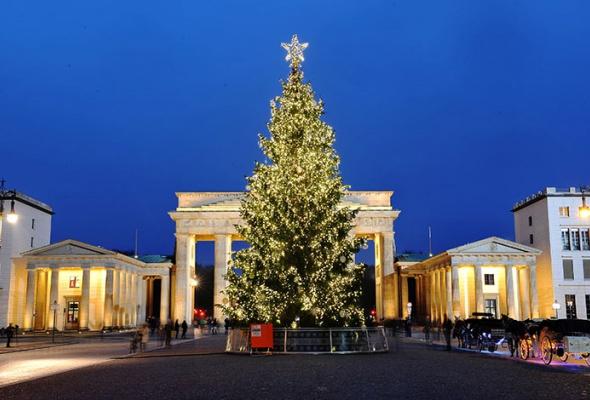 Лучшие новогодние елки мира: фотогалерея - Фото №4