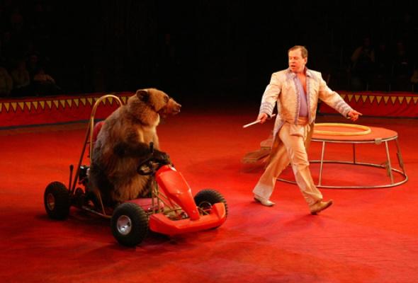 Цирк на Фонтанке - Фото №5