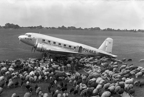 Air France и KLM: история мировых авиабрендов - Фото №4