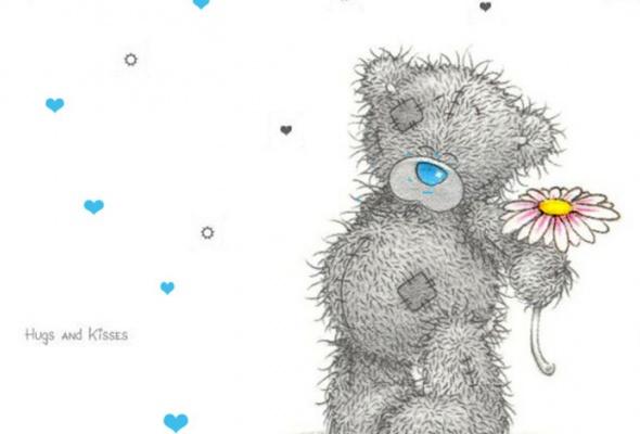 8 самых знаменитых медведей - Фото №1