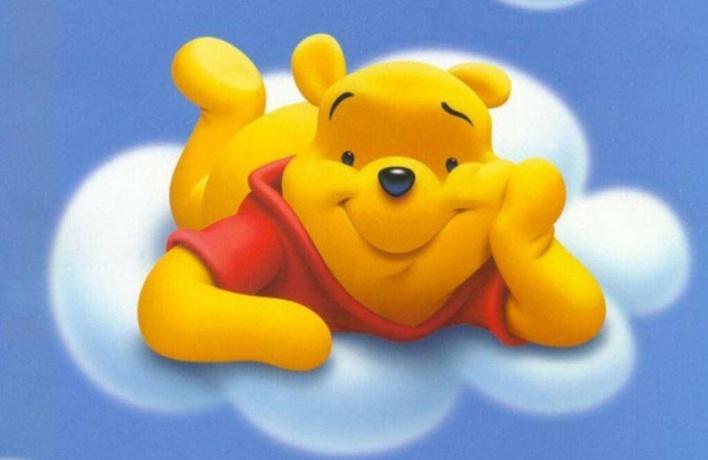 8 самых знаменитых медведей