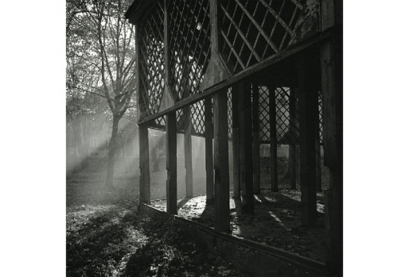 Десять папок Вячеслава Тарновецкого - Фото №5