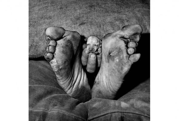 Страна теней. Фотографии Роджера Баллена.1982-2013 - Фото №0
