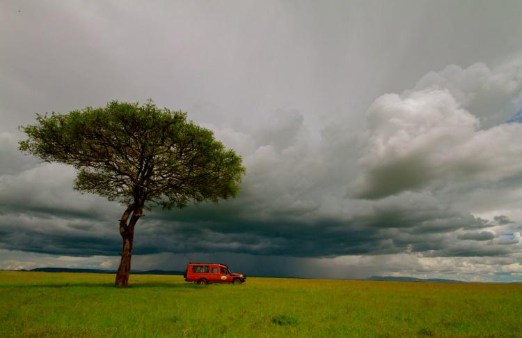 Почувствуй себя Ноем — выиграй сафари в Кении! Фото №431142