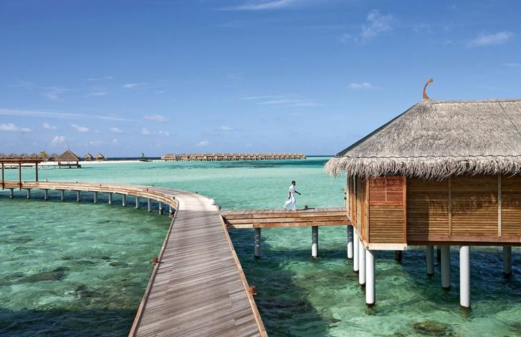 Мальдивы Фото №434831