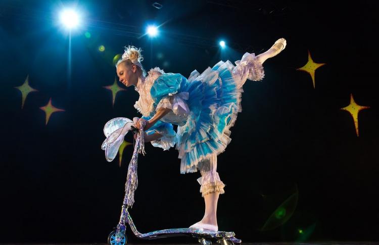 Звезды московского цирка