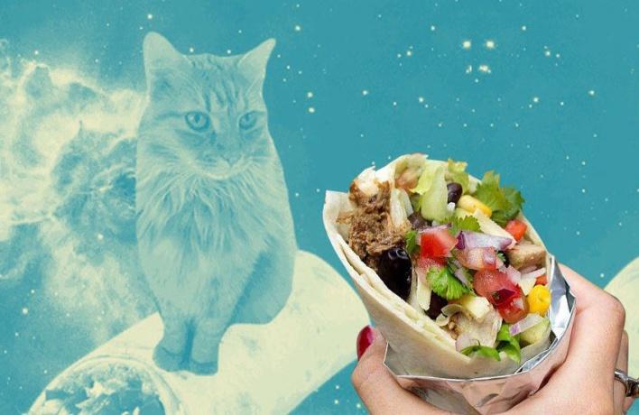 Новый проект от Mishka-кейтеринг — с рецептами, восхваляющими питу