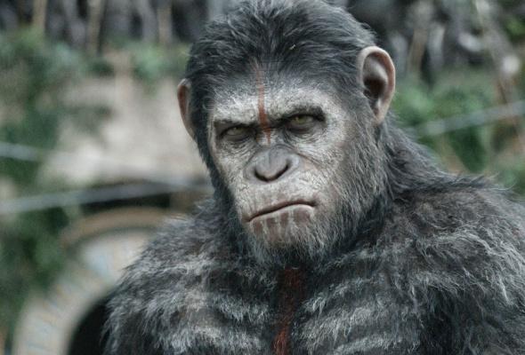 Планета обезьян: революция - Фото №6
